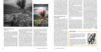 Artikeldoppelseite 11/12
